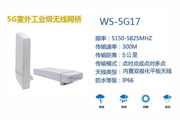 WS5G17.jpg